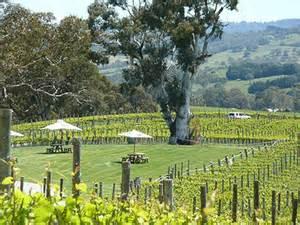 Nepenthe Winery