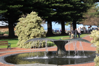 Whale - Victor Harbor