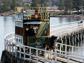 Victor Harbor - Granite Island horse drawn Tram